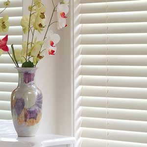 Blinds Sunshine Coast